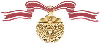 Meritorious Service Medal Citation Examples