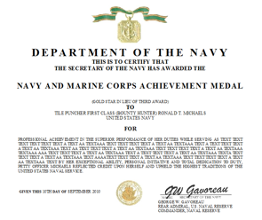 Award Citation Examples http://www.navywriter.com/navy-achievement-medal.htm